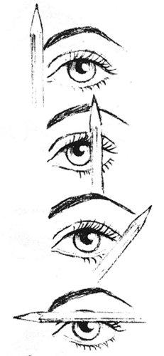 browi.jpg, 20.78 Кб, 231 x 500
