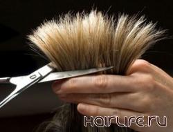 В Одессе пройдет чемпионат среди парикмахеров