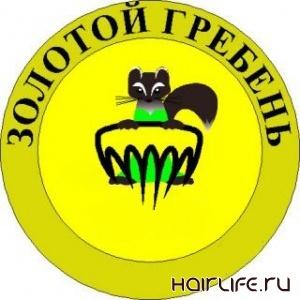 В Уфе подошел к концу конкурс «Золотой гребень – 2010»