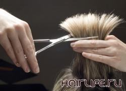 В Хабаровске состоится конкурс «Лучший парикмахер — 2012»