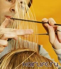Мастерам-парикмахерам Кирова предложили стремиться к созданию элегантного и эксклюзивного