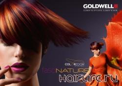 Международный конкурс Goldwell Color Zoom'12
