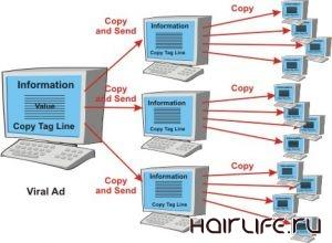 Вирусный маркетинг в рекламе